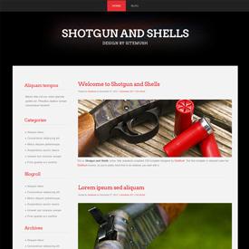 Shotgun and Shells